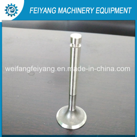 Customized Engine Valve for Mower Marine/Construction/Industrial/Agricultural