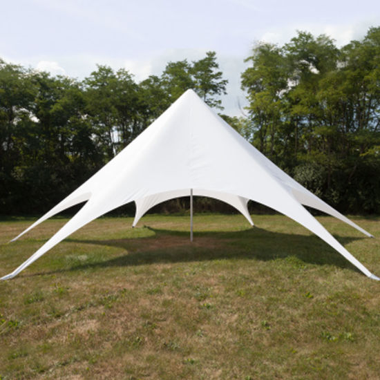 Heavy Duty Twin Pole Commercial Tents/Trade Show Star Canopy/Marquee Tents for Sale & China Heavy Duty Twin Pole Commercial Tents/Trade Show Star Canopy ...