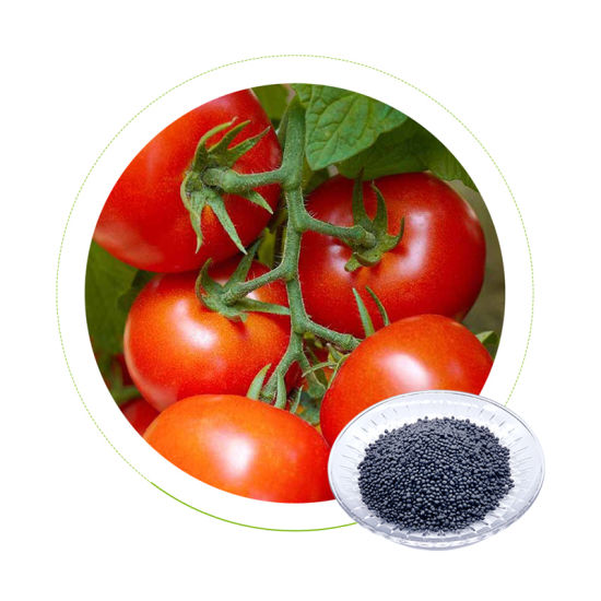 Dr Aid NPK 10-10-40 Factory Directly Supply Seaweed Extract Foliar Miracle Gro Water Soluble Fertilizer