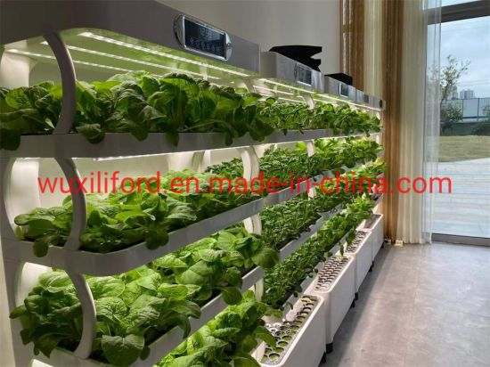 Smart Home Office Indoor Vegetable Soilless Cultivation Hydroponics Growing System