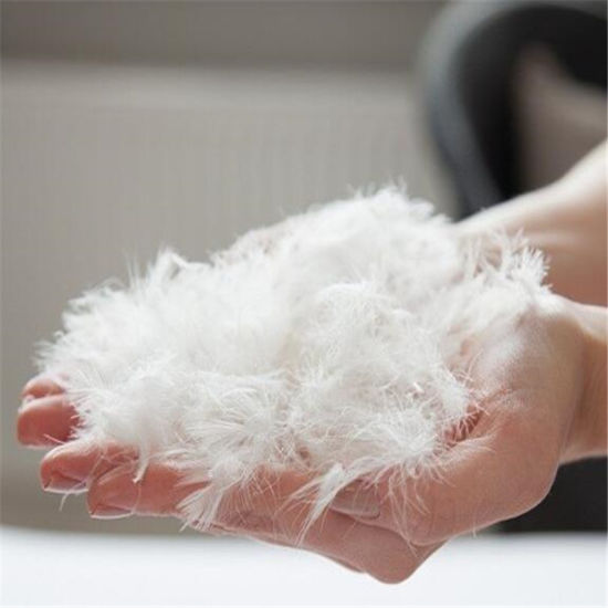 High Quality Washed 80% Grey White Duck Down and Feather Filling for Home Textile