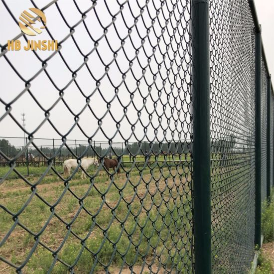 Sports Fields Barrier PVC Coated Chain Link Mesh Fence pictures & photos
