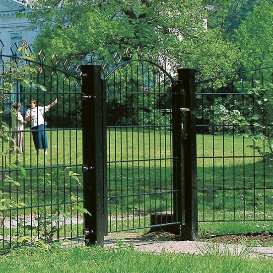 Customized Style Outdoor Iron Fence pictures & photos