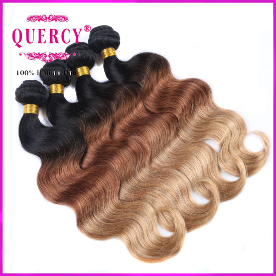 3 Color Top Quality 100% Virgin Peruvian Human Remy Hair for Omber Hair Extensions pictures & photos