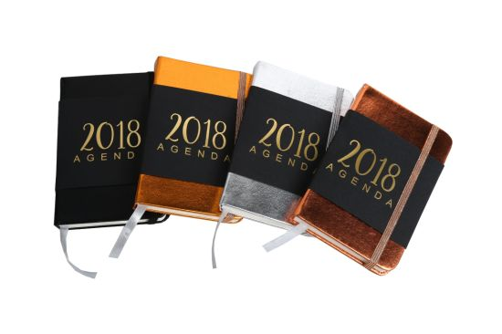 2018 Hot Sales Metel Gold Silver Leather PU Hardcover Notebook pictures & photos
