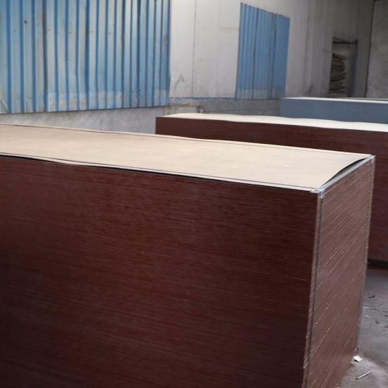 12mm 28mm Anti-Slip Film Faced Birch Plywood for Trailer or Container Flooring