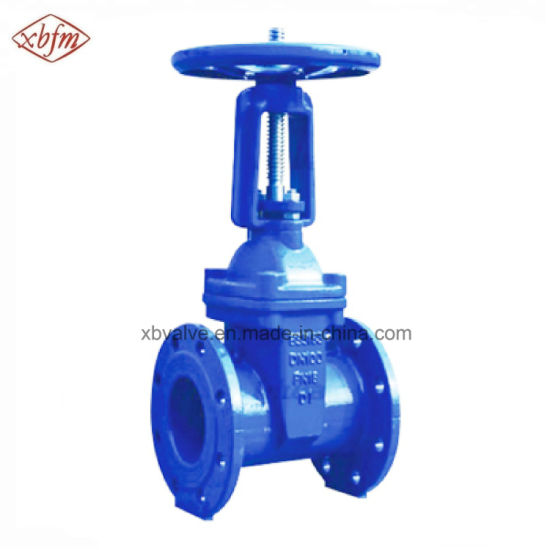 BS5163 OS&Y Resilient Soft Seat Gate Valve pictures & photos