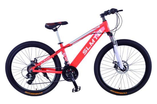2019 Hot Suspension Fork Disc Brake Bicycle Mountain Bike (SL-MTB-012)