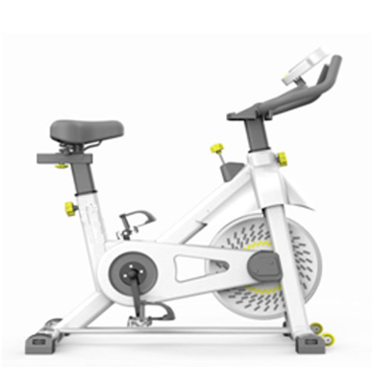 2020 New Model Body Building Home Fitness Magnetic Exercise Bike Spin Bike