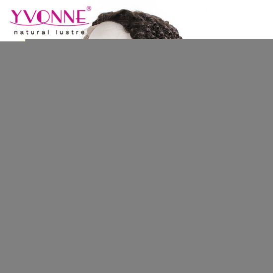 Kinky Curly Brazilian Lace Front Wig for Women pictures & photos