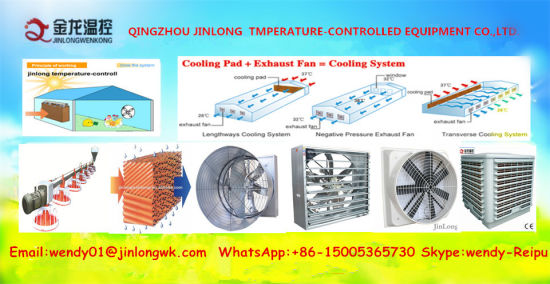 Weight Balance Type Exhaust Fan for Poultry Farms/Industrial Fan pictures & photos