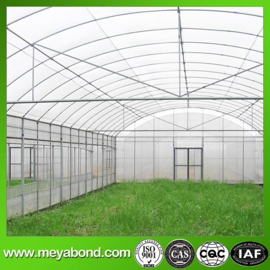 China Factory Wholesale Plastic Anti Hail Net/Insect Net Mesh Plant Covers for Greenhouse pictures & photos