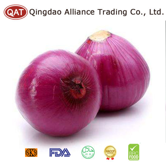 Peeled Purple Onion with Competitive Price