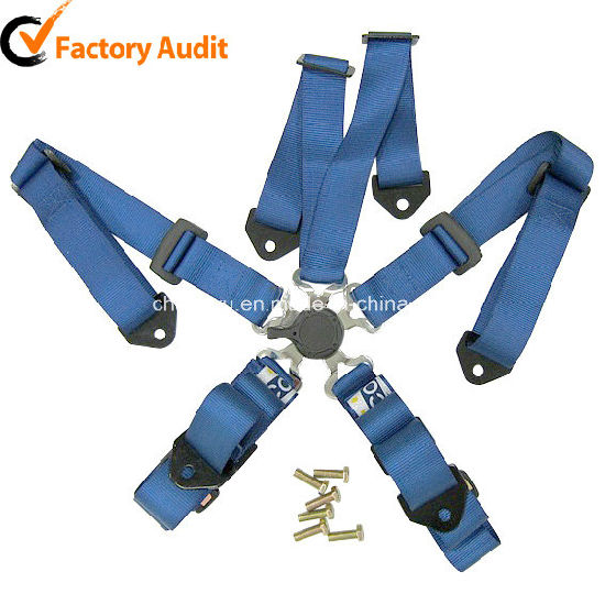 China Quick Release 4 Point Safety Harness Belt - China