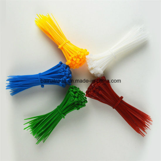 Nylon66 Plastic Tie Cable Nylon Tie for Export pictures & photos