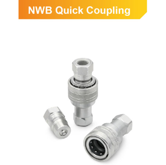 ISO B Stainless Steel Poppet Valve Quick Release Coupling