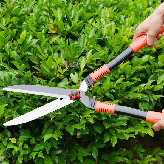 China Manual Trimmer for Hedges Garden Clipper - China Garden ...
