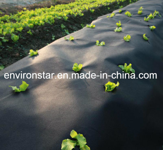 PP/Polypropylene Spunbond Agriculture Nonwoven pictures & photos