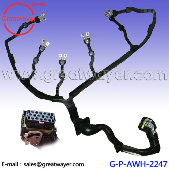 Incredible 51254136417 Man Truck Fuel Injector Wiring Harness China Truck Wiring Digital Resources Instshebarightsorg