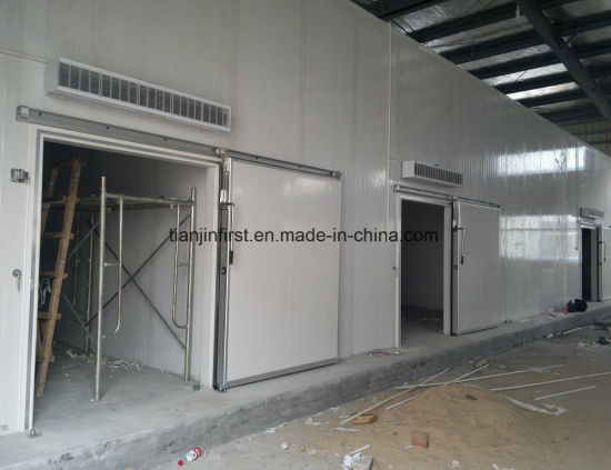 Big Cold Storage/ Cold Room for Meat, Fish, Vegetables, Fruits pictures & photos
