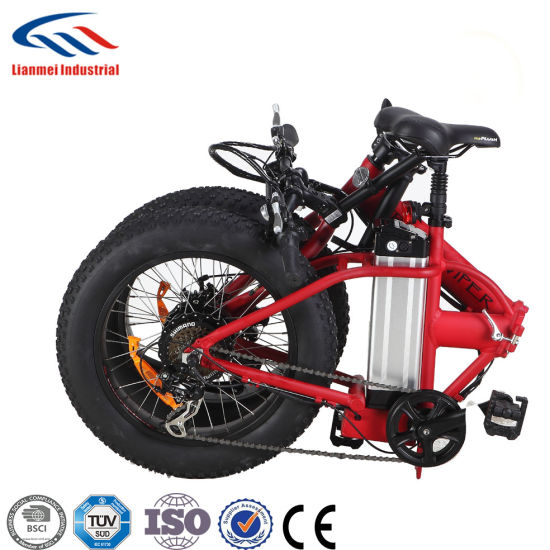 20′′ Mountain Electric Bike with Fat Wheels pictures & photos