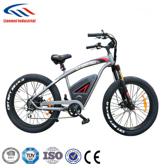 4.0inch Fat Wheel Sport Electirc Bicycle 500W Motor
