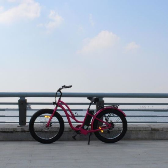3e3a6357a89 8fun Motor 48V 500W Electric Mountain Bike Fat Tire for Sale pictures &  photos