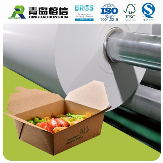 Eco-Friendly Pbs Coated Paper Take Away Food Packaging Box Paper Biodegradable Material Wholesale Paper in Jumbo Roll