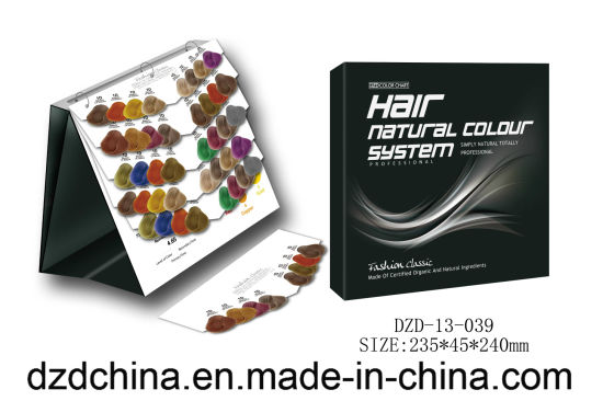 Canlendar Style Color Chart for Display Dye Hair Color pictures & photos