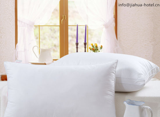 White /Cotton /Hotel Use /Pillow & Pillow Case pictures & photos