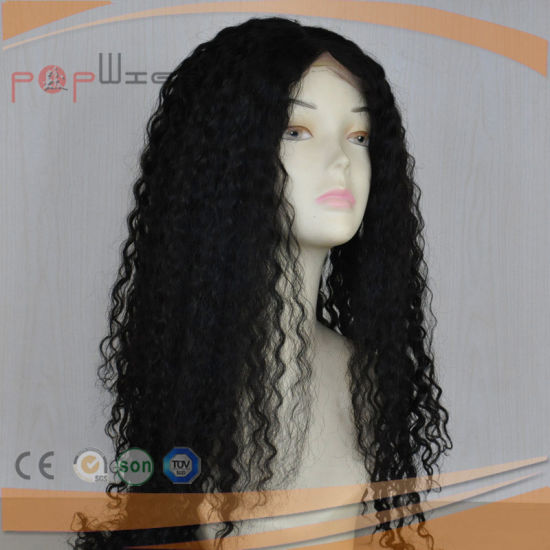 Lomg Curly Lace Human Hair Wig (PPG-l-01455) pictures & photos