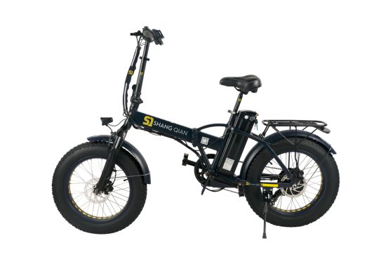 Folding Electric Fat Tire Bike pictures & photos