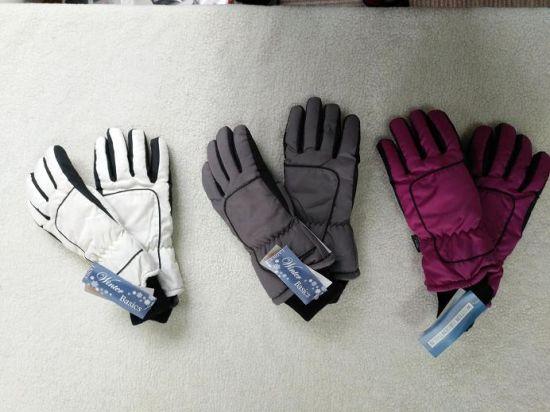 Adult Ski Glove/Adult Winter Glove/Winter Bike Glove/ Bike Glove/Detox Glove/Eco Finish Glove/Oekotex Glove/Touch Screen Glove/Waterproof Glove
