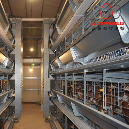 Stainless Steel Wire Mesh Layers Cage with Poultry Farming Equipment
