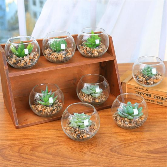 New Style Artificial Flower Artificial Succulents Plants with Glass Flowerpot pictures & photos