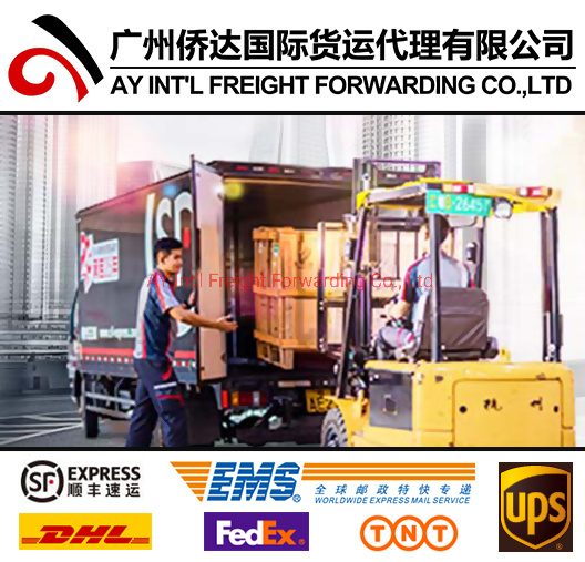 Competitive Express Courier Services (EMS express rates Shenzhen to Pakistan) pictures & photos