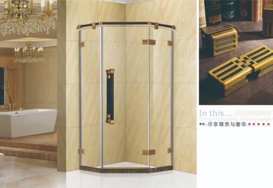 Modern Design Shower Room SS304 From China (OT9853)