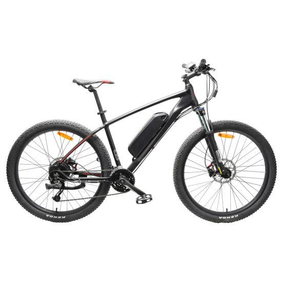 China Wholesale Aluminium Alloy Lithium Power Fat Tire 21speed Light Weight Mountain Electric Mountain E Bike