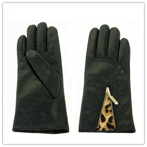 Lady Fashion Leather Gloves (JYG-25235)