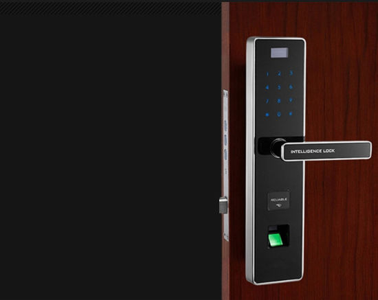 Fingerprint Lock for Security Door (V-FP8018) pictures & photos
