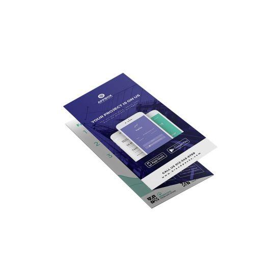Custom Promotion Flyer, Leaflet, Catalogue, Booklet, Brochure Printing Service