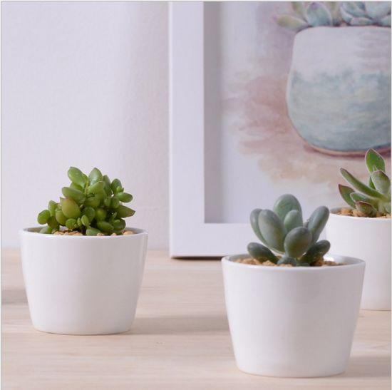 China Decorative Mini White Ceramic Flower Pots Round China