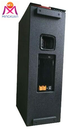 Dual 12inch Self Powered Line Array Speaker with DSP