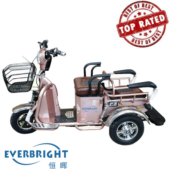 3 Wheel Electric Motor Tricycle Trike E Bike for Adult