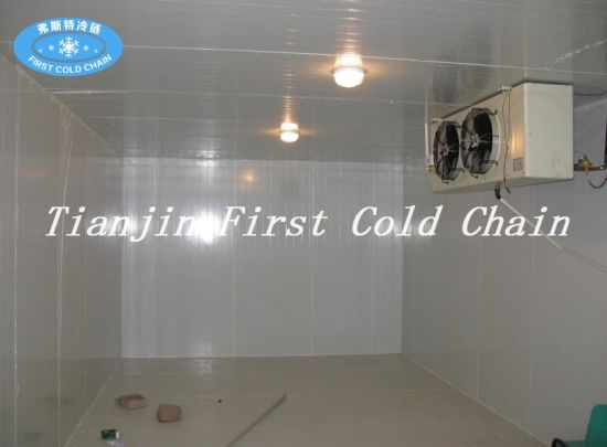 Fish Storage Seafood Meat Refrigeration Unit for China Cold Storage pictures & photos