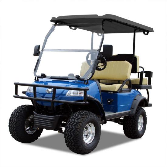 Electric Buggy Golf Cart Hunting Car (DEL2022D2Z, blue) Blackroof