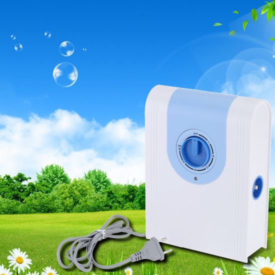 Home Portable 300mg/H Ozone Air and Water Purifier