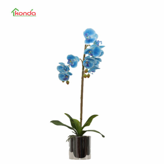 Home and Office Decoration Artificial Orchid Flowers