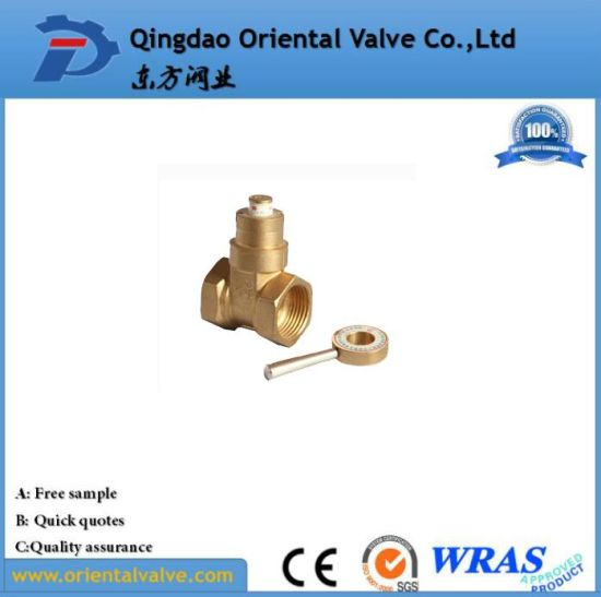 Nice Quality Brass Ball Valve ISO228 Quick Connected Brass Ball Valve pictures & photos