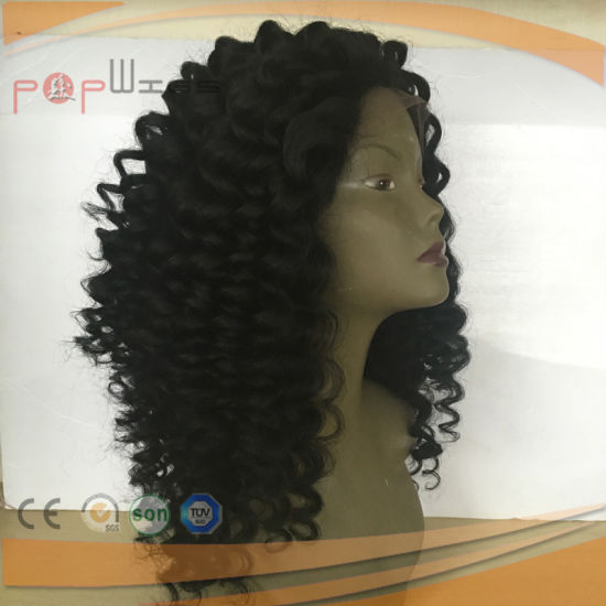 Full Lace Virgin Hair Deep Curly Wig (PPGL-0623) pictures & photos